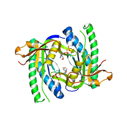 Molmil generated image of 1wc5