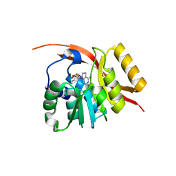Molmil generated image of 1wy7