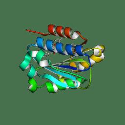 Molmil generated image of 1xdd