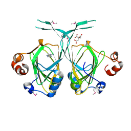 Molmil generated image of 1xe8