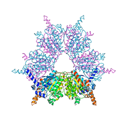 Molmil generated image of 1xnv
