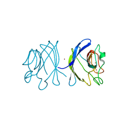 Molmil generated image of 1xtm