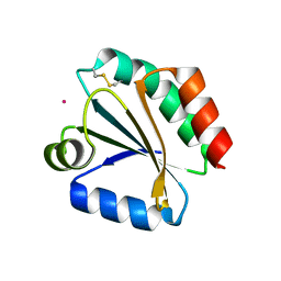Molmil generated image of 1xwb