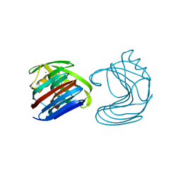 Molmil generated image of 1xyn