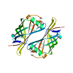Molmil generated image of 1y0g