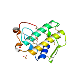Molmil generated image of 1y6o