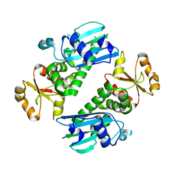 Molmil generated image of 1y6z