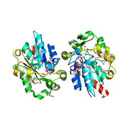 Molmil generated image of 1y7i