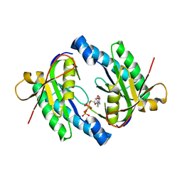 Molmil generated image of 1ybu