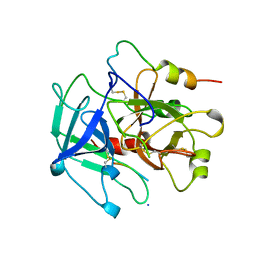 Molmil generated image of 1ycp