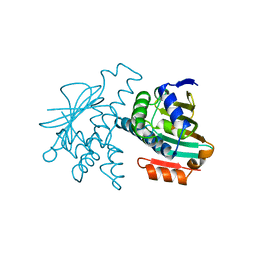 Molmil generated image of 1yer