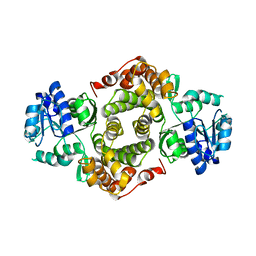 Molmil generated image of 1yj8