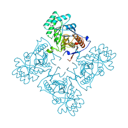 Molmil generated image of 1ypf