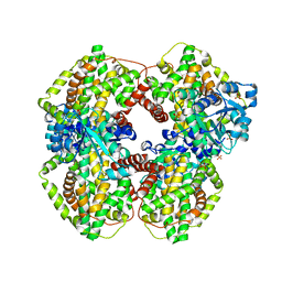 Molmil generated image of 1yrl