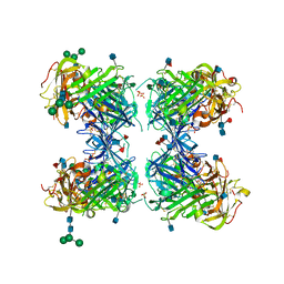 Molmil generated image of 1ywh