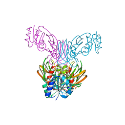 Molmil generated image of 1z0u