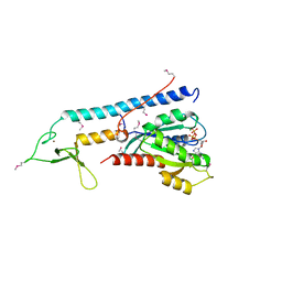 Molmil generated image of 1zbd