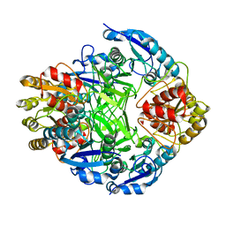 Molmil generated image of 1zcf