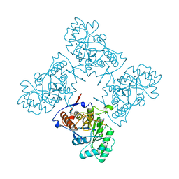 Molmil generated image of 2a1y