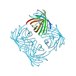 Molmil generated image of 2a46