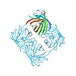 Molmil generated image of 2a47