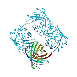Molmil generated image of 2a48
