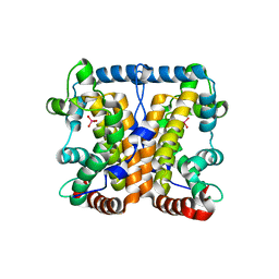 Molmil generated image of 2akc
