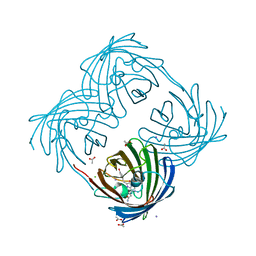 Molmil generated image of 2arl