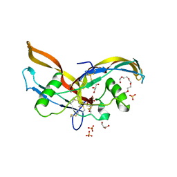 Molmil generated image of 2arv
