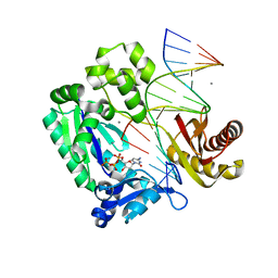 Molmil generated image of 2asd