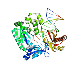 Molmil generated image of 2asl