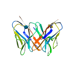 Molmil generated image of 2atp