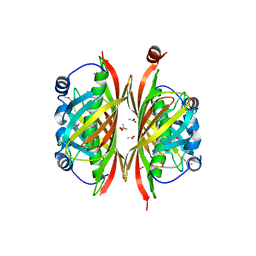Molmil generated image of 2b6e