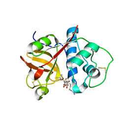 Molmil generated image of 2bdz