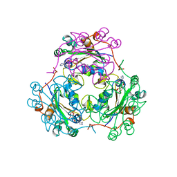 Molmil generated image of 2bef