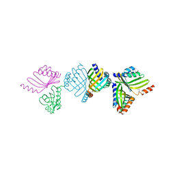 Molmil generated image of 2bng