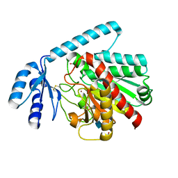 Molmil generated image of 2boa