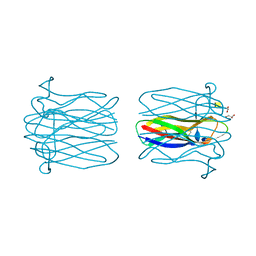 Molmil generated image of 2ccv