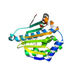 Molmil generated image of 2cdd