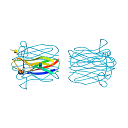 Molmil generated image of 2cgz
