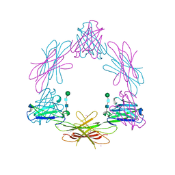 Molmil generated image of 2ch8
