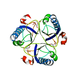 Molmil generated image of 2cht