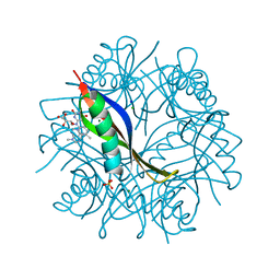 Molmil generated image of 2cie