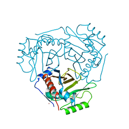 Molmil generated image of 2cla