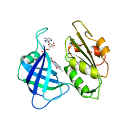 Molmil generated image of 2cnd
