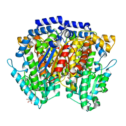 Molmil generated image of 2cxn