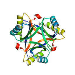 Molmil generated image of 2cz4