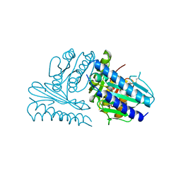 Molmil generated image of 2czi