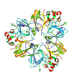 Molmil generated image of 2d5h
