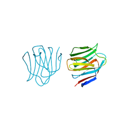 Molmil generated image of 2d6l